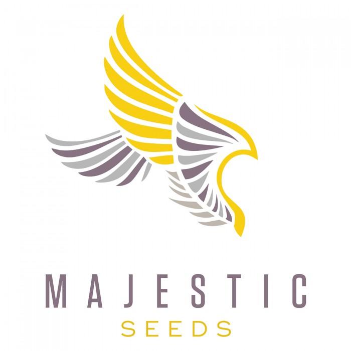 Majestic Healers